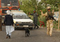 Vehicle search, Helmand, Afghanistan, 2006