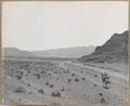 Entering the Dakka Plain, 1919