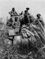 Sherman tank, Probyn's Horse (5th King Edward VII's Own Lancers), Burma, 1945 (c)