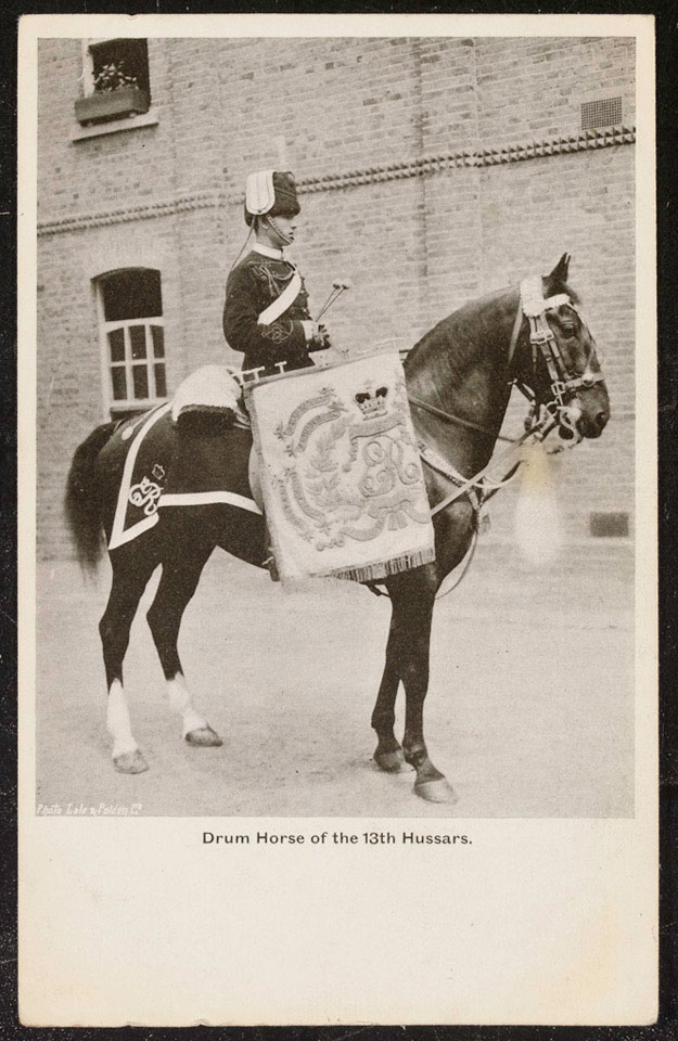Drum Horse of the 13th Hussars, 1912 (c)