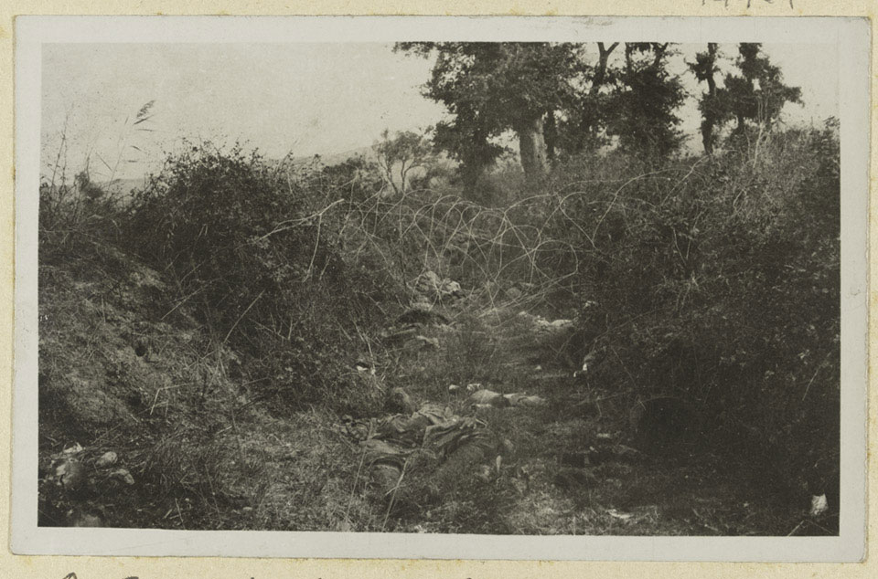 Turkish dead at Chocolate Hill, Suvla Bay, Gallipoli, 1915