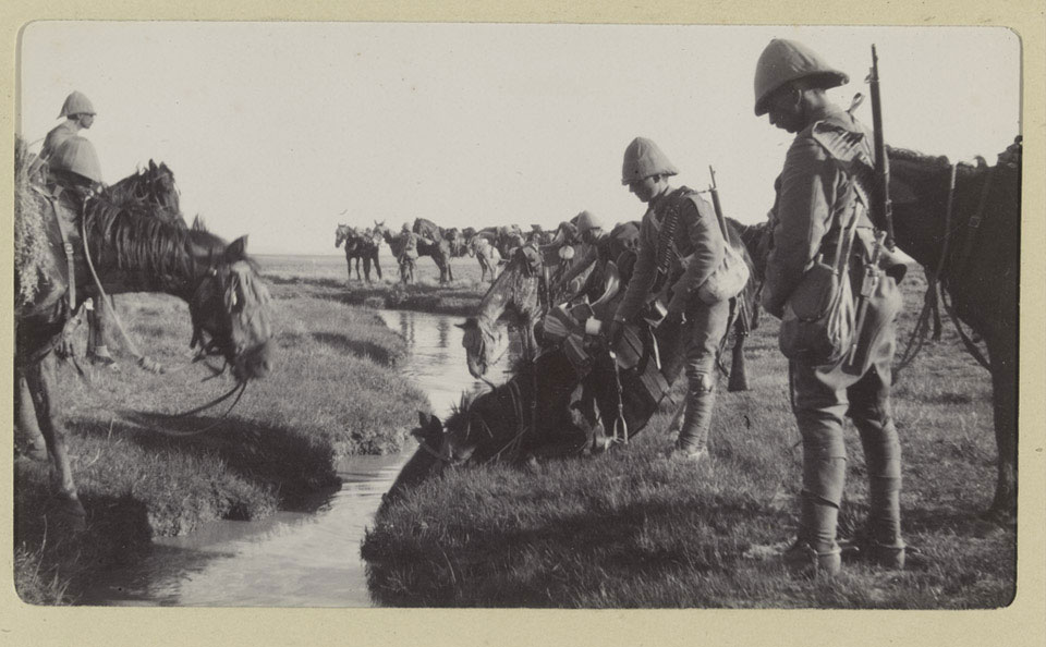 Mounted Infantry watering their horses, South Africa, 1901