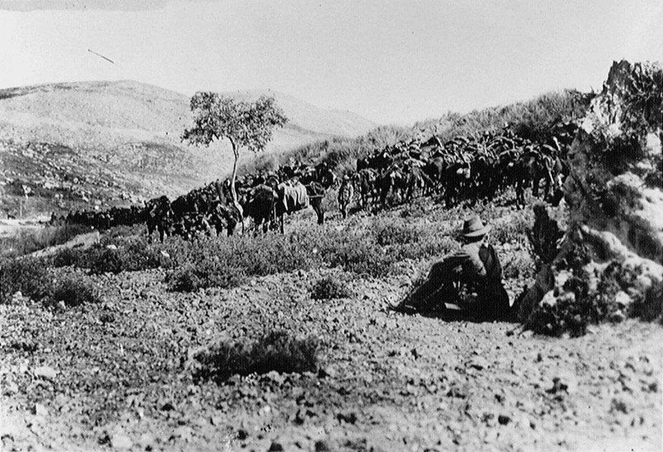 Australian cavalry waiting just outside Nablus, 1918